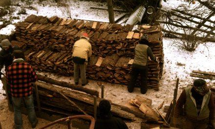 Corvée de bois