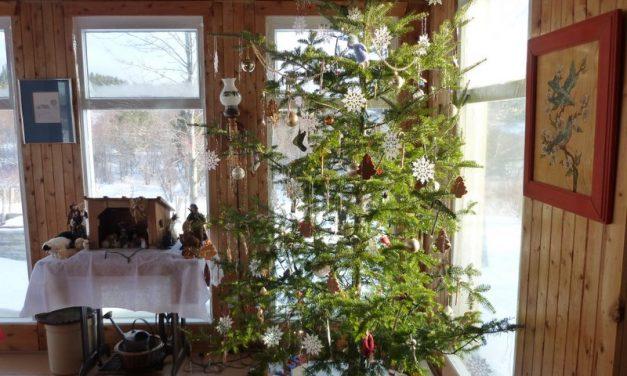 Conte de Noël : Il faudra un jour quitter tout ça