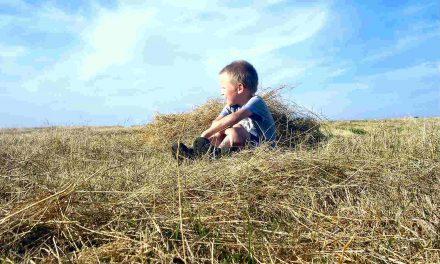 Les leçons de sociologie rurale de mon grand-père