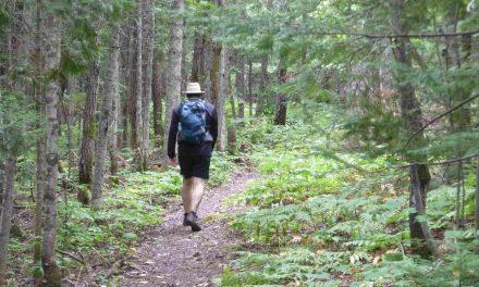 Les PNR français : des expériences stimulantes pour le Québec rural