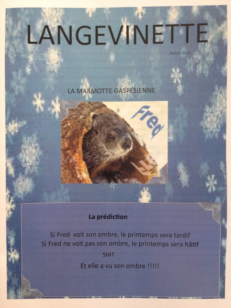 SHIT_Marmotte