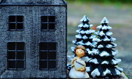 Un déménagement pour Noël