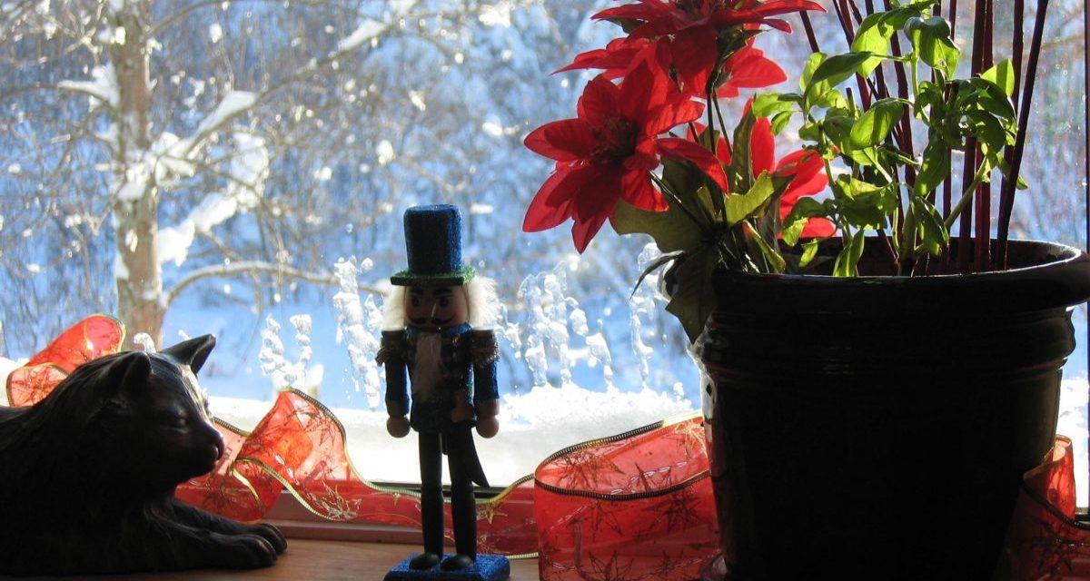 Mémoire pour un conte de Noël: De charbon et d'huile à chauffage