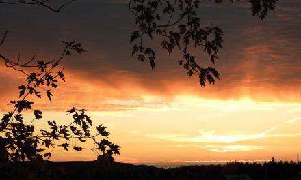 Les régionsà l'ère Couillard : abandon et grande mystification